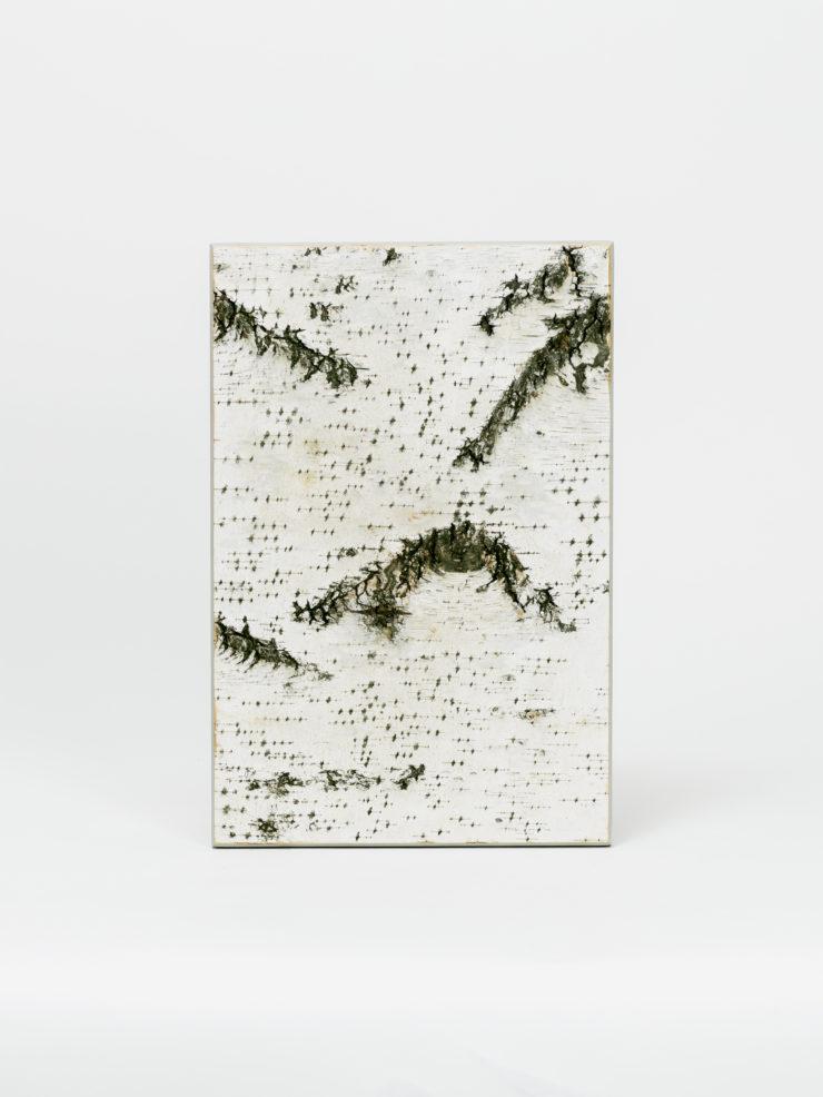 Birkenrinde (weiß)