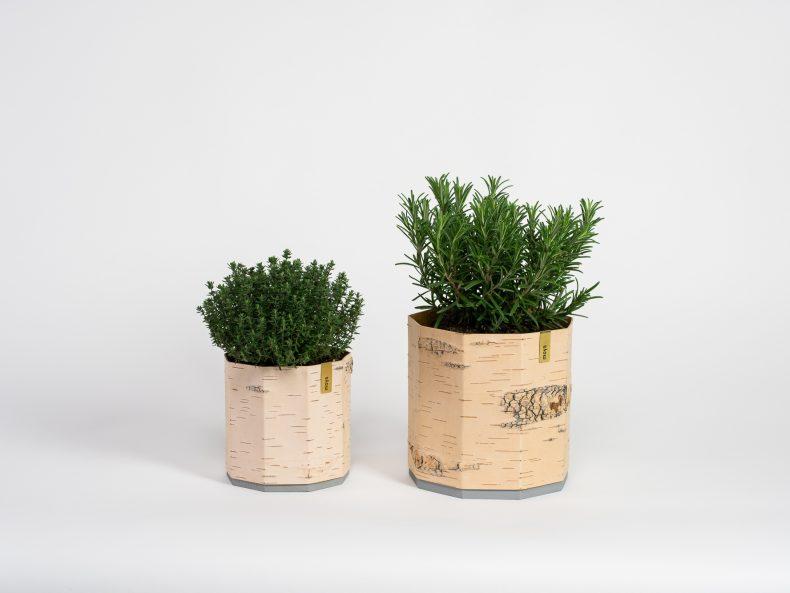 Pflanzen und Kräuter Übertopf aus Birke und Holz
